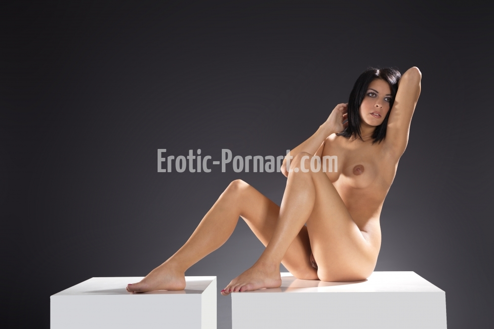 erotic-pornart-1