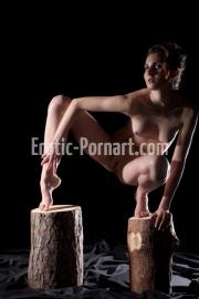 erotic-pornart-1-9